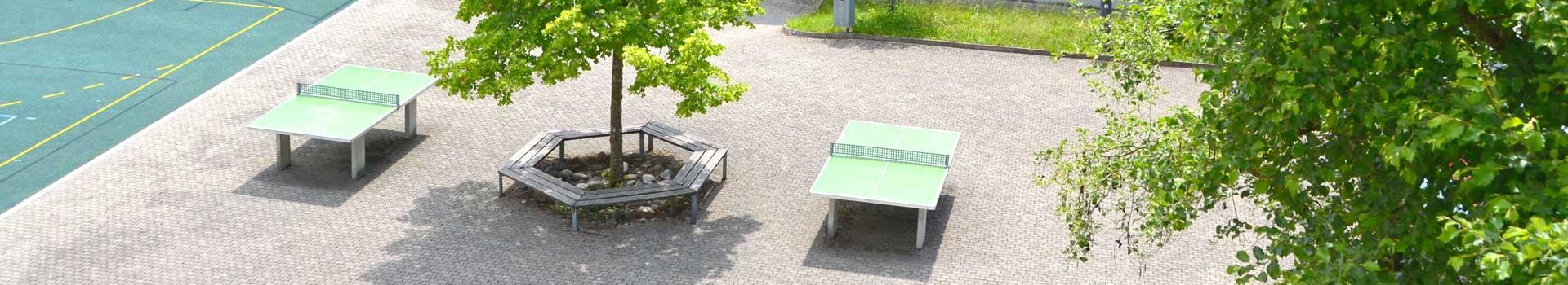 schoenengrund-primarschule-header-06.jpg